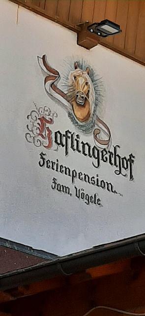 2021-Haflingerhof-Kramsach-27